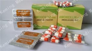 Amoxicillin Capsule 500mg
